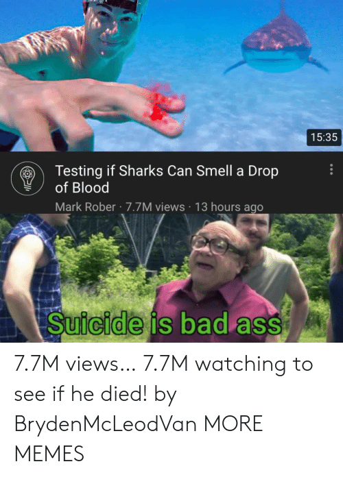 Can Smell: 15:35  Testing if Sharks Can Smell a Drop  of Blood  Mark Rober 7.7M views 13 hours ago  Suicide is bad ass 7.7M views… 7.7M watching to see if he died! by BrydenMcLeodVan MORE MEMES