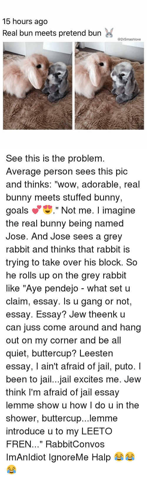 """Averagers: 15 hours ago  Real bun meets pretend burn  @DrSmashlove See this is the problem. Average person sees this pic and thinks: """"wow, adorable, real bunny meets stuffed bunny, goals 💕😍."""" Not me. I imagine the real bunny being named Jose. And Jose sees a grey rabbit and thinks that rabbit is trying to take over his block. So he rolls up on the grey rabbit like """"Aye pendejo - what set u claim, essay. Is u gang or not, essay. Essay? Jew theenk u can juss come around and hang out on my corner and be all quiet, buttercup? Leesten essay, I ain't afraid of jail, puto. I been to jail...jail excites me. Jew think I'm afraid of jail essay lemme show u how I do u in the shower, buttercup...lemme introduce u to my LEETO FREN..."""" RabbitConvos ImAnIdiot IgnoreMe Halp 😂😂😂"""