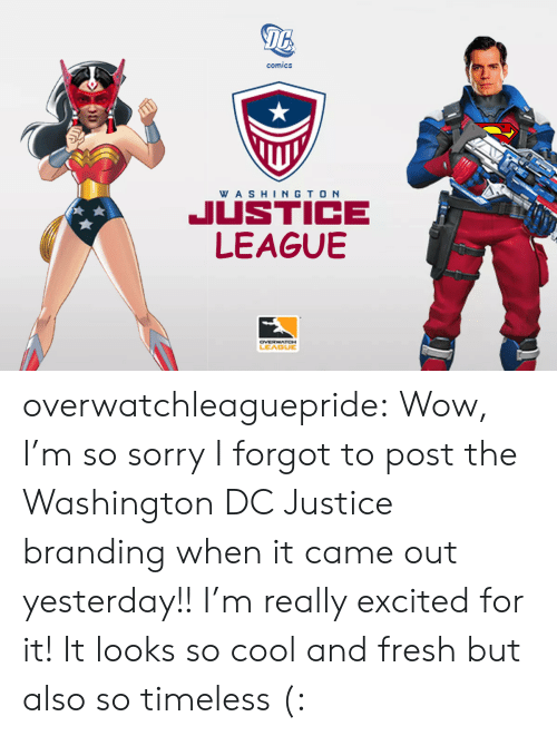 Really Excited: 16  comics  WA SHINGTO N  JUSTICE  LEAGUBE  LEAGUE overwatchleaguepride:  Wow, I'm so sorry I forgot to post the Washington DC Justice branding when it came out yesterday!!I'm really excited for it! It looks so cool and fresh but also so timeless (: