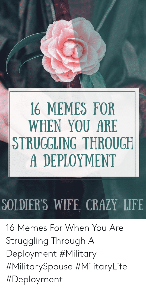 Crazy, Life, and Memes: 16 MEMES FOR  WHEN YOU ARE  STRUGGLING THROUGH  A DEPLOYMENT  SOLDIER'S WIFE, CRAZY LIFE  eesccece 16 Memes For When You Are Struggling Through A Deployment #Military #MilitarySpouse #MilitaryLife #Deployment
