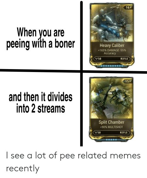 Boner, Memes, and Reddit: 16V  When you are  peeing with a boner  Heavy Caliber  +165% DAMAGE-55%  Accuracy  50  RIFLE  15K  and then it divides  into 2 streams  Split Chamber  +90% MULTISHOT  RIFLE  50 I see a lot of pee related memes recently