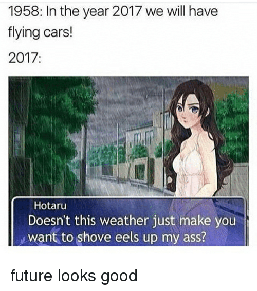 Ass, Cars, and Future: 1958: In the year 2017 we will have  flying cars!  2017:  Hotaru  Doesn't this weather just make you  Want to shove eels up my ass? future looks good
