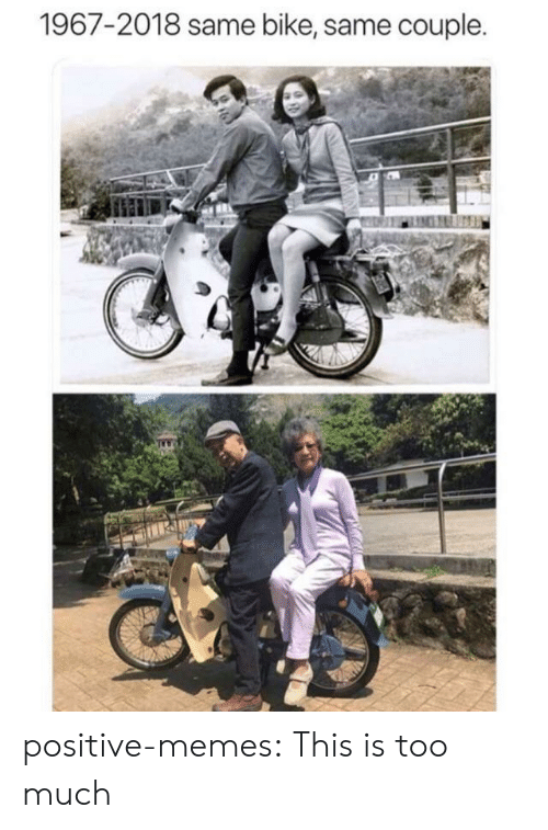 Memes, Too Much, and Tumblr: 1967-2018 same bike, same couple. positive-memes: This is too much