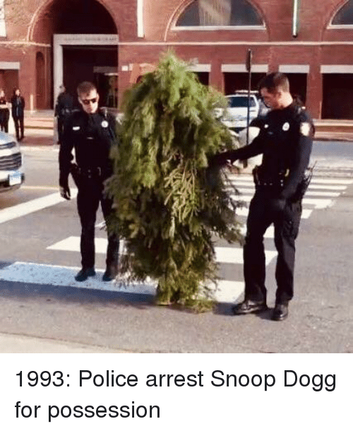 Police, Snoop, and Snoop Dogg: 1993: Police arrest Snoop Dogg for possession