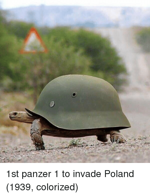 Poland, Panzer, and Colorized: 1st panzer 1 to invade Poland (1939, colorized)