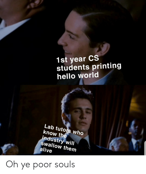 students: 1st year CS  students printing  hello world  Lab tutors who  know the  industry will  swallow them  alive Oh ye poor souls