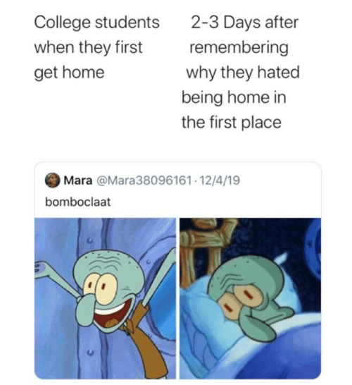 students: 2-3 Days after  remembering  College students  when they first  why they hated  get home  being home in  the first place  Mara @Mara38096161· 12/4/19  bomboclaat
