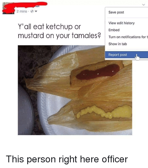 History, Ketchup, and Mustard: 2 minse  Save post  View edit history  Y'all eat ketchup or  mustard on your tamales  Embed  Turn on notifications for t  Show in talb  Report post This person right here officer