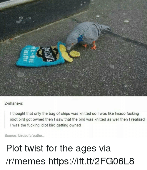 Getting Owned: 2-shane-s:  I thought that only the bag of chips was knitted so I was like Imaoo fucking  idiot bird got owned then I saw that the bird was knitted as well then I realized  I was the fucking idiot bird getting owned  Source: birdsofafeathe... Plot twist for the ages via /r/memes https://ift.tt/2FG06L8