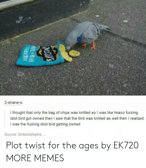 Getting Owned: 2-shane-s:  I thought that only the bag of chips was knitted so I was like Imaoo fucking  idiot bird got owned then I saw that the bird was knitted as well then I realized  I was the fucking idiot bird getting owned  Source: birdsofafeathe... Plot twist for the ages by EK720 MORE MEMES