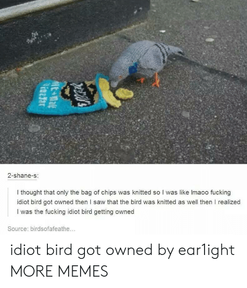 Getting Owned: 2-shane-s  I thought that only the bag of chips was knitted so I was like lmaoo fucking  idiot bird got owned then l saw that the bird was knitted as well then I realized  I was the fucking idiot bird getting owned  Source: birdsofafeathe... idiot bird got owned by ear1ight MORE MEMES