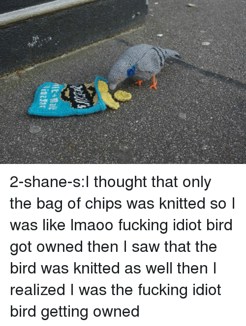 Getting Owned: 2-shane-s:I thought that only the bag of chips was knitted so I was like lmaoo fucking idiot bird got owned then I saw that the bird was knitted as well then I realized I was the fucking idiot bird getting owned