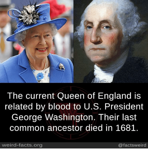 u-s-president: 2  The current Queen of England is  related by blood to U.S. President  George Washington. Their last  common ancestor died in 1681.  weird-facts.org  @factsweird