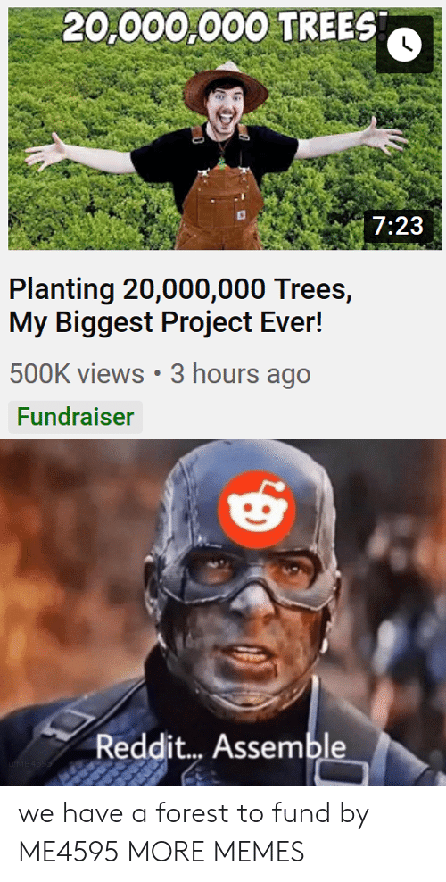 assemble: 20,000,000 TREES  7:23  Planting 20,000,000 Trees,  My Biggest Project Ever!  500K views 3 hours ago  Fundraiser  Reddit... Assemble  uME4SSS we have a forest to fund by ME4595 MORE MEMES