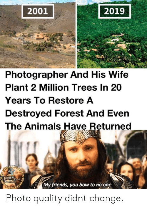 destroyed: 2001  2019  Photographer And His Wife  Plant 2 Million Trees In 20  Years To Restore A  Destroyed Forest And Even  The Animals Have Returned  RIXS  LORdNGS  Shzeporiang  My friends, you bow to no one  IR  203 Photo quality didnt change.