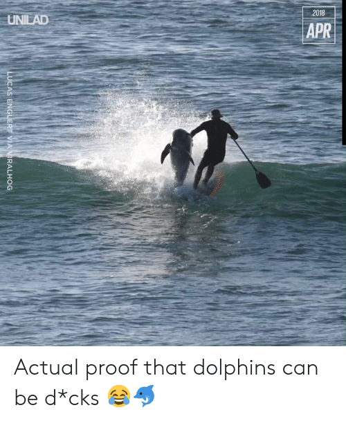 Dank, Dolphins, and 🤖: 2018  UNILAD  APR  LUCAS ENGLERT VIA VIRALHOG Actual proof that dolphins can be d*cks 😂🐬