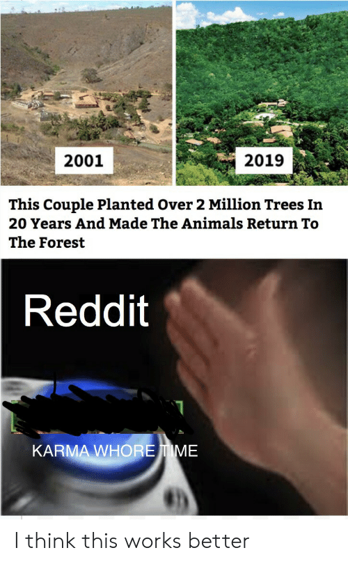 Karma: 2019  2001  This Couple Planted Over 2 Million Trees In  20 Years And Made The Animals Return To  The Forest  Reddit  KARMA WHOREIME I think this works better