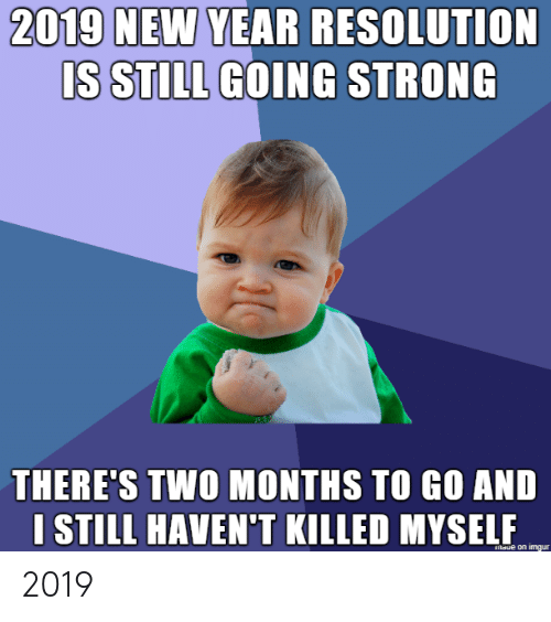 New Year's, Imgur, and Strong: 2019 NEW YEAR RESOLUTION  IS STILL GOING STRONG  THERE'S TWO MONTHS TO GO AND  I STILL HAVEN'T KILLED MYSELF  laue on imgur 2019