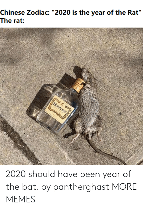 Have Been: 2020 should have been year of the bat. by pantherghast MORE MEMES