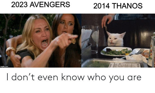 Avengers, Thanos, and Com: 2023 AVENGERS  2014 THANOS  imgflip.com I don't even know who you are