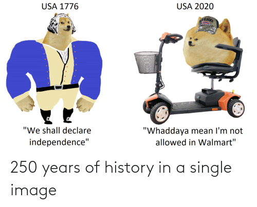 History: 250 years of history in a single image