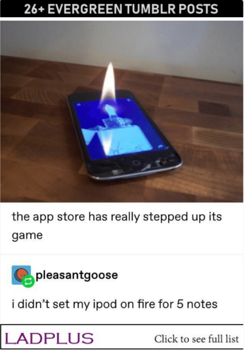 App Store: 26+EVERGREEN TUMBLR POSTS  the app store has really stepped up its  game  pleasantgoose  i didn't set my ipod on fire for 5 notes  LADPLUS  Click to see full list