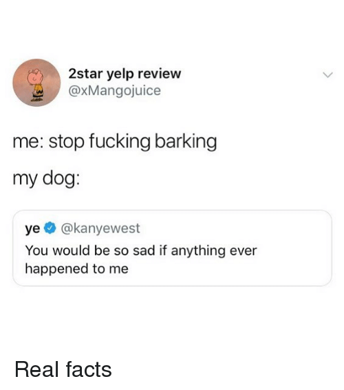 Yelp: 2star yelp review  @xMangojuice  me: stop fucking barking  my dog  ye @kanyewest  You would be so sad if anything ever  happened to me Real facts
