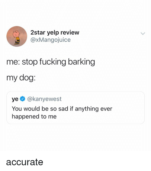 Yelp: 2star yelp review  @xMangojuice  me: stop fucking barking  my dog:  ye @kanyewest  You would be so sad if anything ever  happened to me accurate