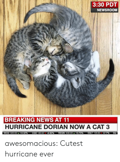News, Tumblr, and Blog: 3:30 PDT  NEWSROOM  BREAKING NEWS AT 11  HURRICANE DORIAN NOW A CAT 3  ESLT 126.85 4.17%  WCG 320.63  +4.32 %  REGN 406.00 +3.70 %  CGC 49.424.92%  SQ awesomacious:  Cutest hurricane ever