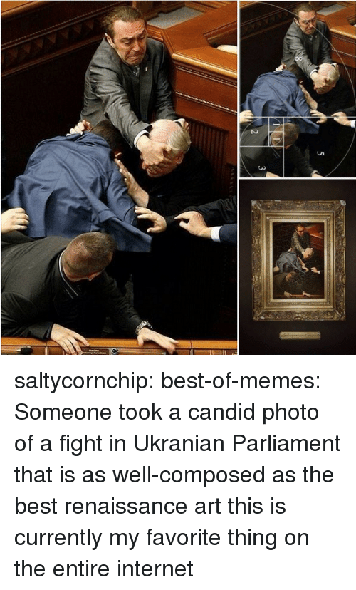 Best Of Memes: 3  5  2 saltycornchip: best-of-memes:  Someone took a candid photo of a fight in Ukranian Parliament that is as well-composed as the best renaissance art  this is currently my favorite thing on the entire internet