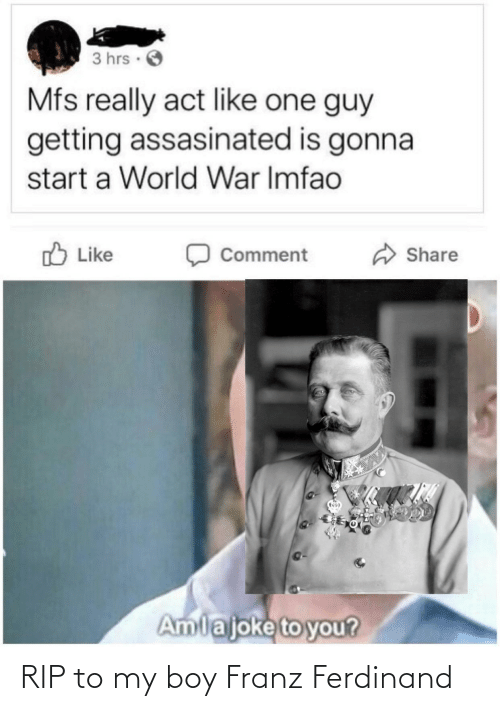 To You: 3 hrs ·  Mfs really act like one guy  getting assasinated is gonna  start a World War Imfao  O Like  Share  Comment  Amlajoke to you? RIP to my boy Franz Ferdinand