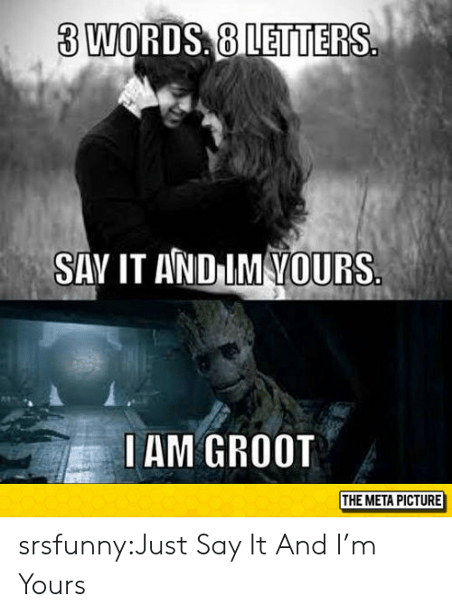 Just Say It: 3 WORDS, 8 LETTERS  SAV IT AND IM VOURS  IAM GROOT  THE META PICTURE srsfunny:Just Say It And I'm Yours