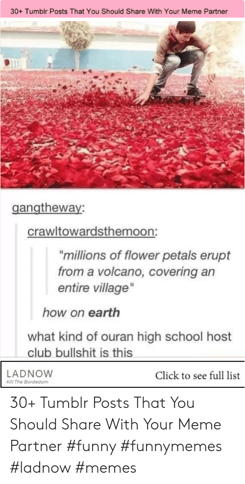 "ouran high school host club: 30+ Tumblr Posts That You Should Share With Your Meme Partner  gangtheway  crawltowardsthemoon:  ""millions of flower petals erupt  from a volcano, covering an  entire village""  how on earth  what kind of ouran high school host  club bullshit is this  LADNOW  Click to see full list  Kll The Bordedom 30+ Tumblr Posts That You Should Share With Your Meme Partner #funny #funnymemes #ladnow #memes"