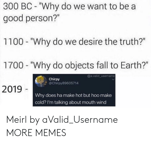 "Dank, Fall, and Memes: 300 BC - ""Why do we want to bea  good person?""  1100 - ""Why do we desire the truth?""  1700 - ""Why do objects fall to Earth?""  2019  @a.valid username  Chirpy  @Chirpy89605714  Why does ha make hot but hoo make  cold? I'm talking about mouth wind Meirl by aValid_Username MORE MEMES"