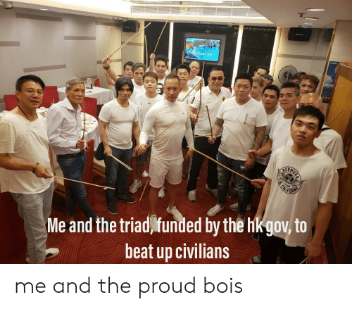 Reddit, Proud, and Triad: 304l  4  CALIFOR  NIA  Me and the triad funded by the hkgov, to  beat up civilians me and the proud bois