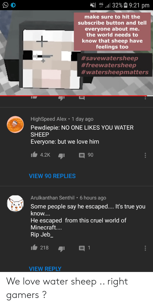 Love, Minecraft, and True: 32%9:21 pm  4G  make sure to hit the  subscribe button and tell  everyone about me.  the world needs to  know that sheep have  feelings too  #savewatersheep  #freewatersheep  #watersheepmatters  HighSpeed Alex 1 day ago  Pewdiepie: NO ONE LIKES YOU WATER  SHEEP  Everyone: but we love him  E 90  4.2K  VIEW 90 REPLIES  Arulkanthan Senthil  6 hours ago  Some people say he escaped.... It's true you  know....  He escaped from this cruel world of  Minecraft....  Rip Jeb_  218  1  VIEW REPLY We love water sheep .. right gamers ?