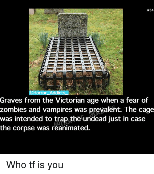 prevalent:  #34  orror Addicts  Graves from the Victorian age when a fear of  zombies and vampires was prevalent. The cage  was intended to trap the undead just in case  the corpse was reanimated. Who tf is you