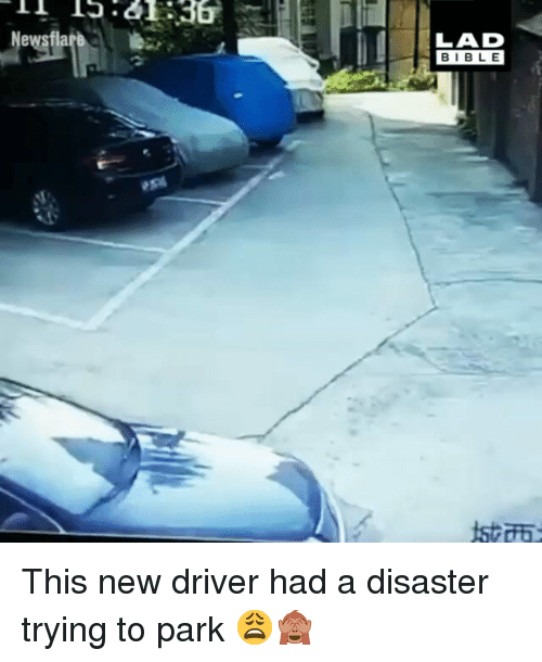 Memes, Bible, and 🤖: 36  Newsflare  LAD  BIBLE This new driver had a disaster trying to park 😩🙈