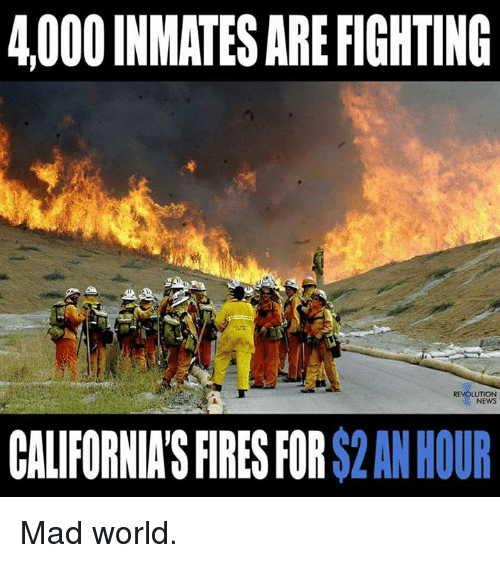 4000 inmates are fighting revolution news california s fires for 2