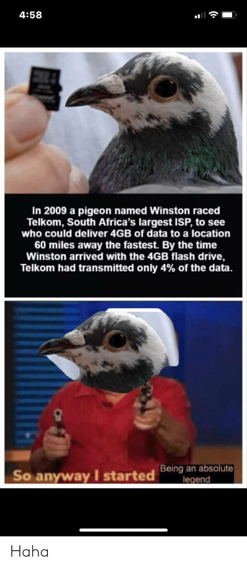 arrived: 4:58  In 2009 a pigeon named Winston raced  Telkom, South Africa's largest ISP, to see  who could deliver 4GB of data to a location  60 miles away the fastest. By the time  Winston arrived with the 4GB flash drive,  Telkom had transmitted only 4% of the data.  Being an absolute  legend  So anyway I started Haha