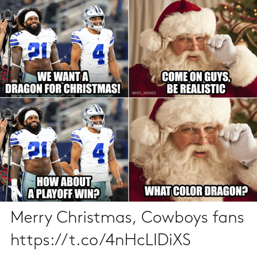 What Color: 4.  COME ON GUYS,  BE REALISTIC  WE WANT A  DRAGON FOR CHRISTMAS!  @NFL_MEMES  4.  HOW ABOUT  A PLAYOFF WIN?  WHAT COLOR DRAGON? Merry Christmas, Cowboys fans https://t.co/4nHcLIDiXS