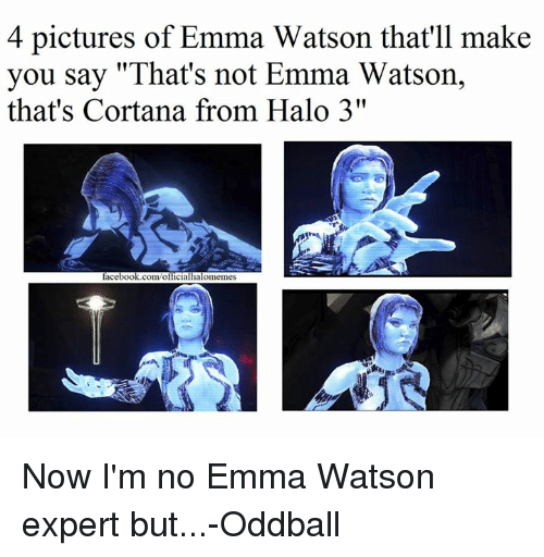"oddball: 4 pictures of Emma Watson that'll make  you say ""That's not Emma Watson,  that's Cortana from Halo 3""  facebook.com/o  cial  alomemes Now I'm no Emma Watson expert but...-Oddball"