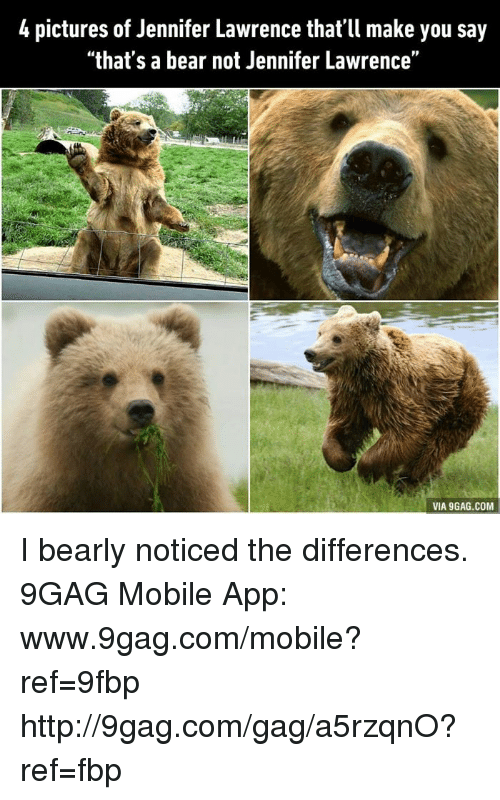 "Www 9Gag: 4 pictures of Jennifer Lawrence that'll make you say  ""that's a bear not Jennifer Lawrence""  VIA 9GAG.COM I bearly noticed the differences. 9GAG Mobile App: www.9gag.com/mobile?ref=9fbp  http://9gag.com/gag/a5rzqnO?ref=fbp"