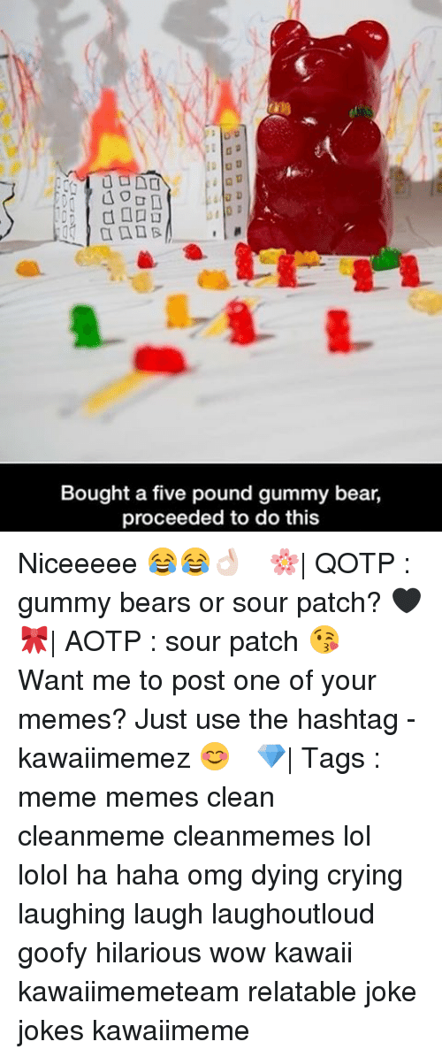 laughing. laugh: 40  Bought a five pound gummy bear,  proceeded to do this Niceeeee 😂😂👌🏻 ✿ 🌸| QOTP : gummy bears or sour patch? 🖤 🎀| AOTP : sour patch 😘 ✿ Want me to post one of your memes? Just use the hashtag -kawaiimemez 😊 ✿ 💎| Tags : meme memes clean cleanmeme cleanmemes lol lolol ha haha omg dying crying laughing laugh laughoutloud goofy hilarious wow kawaii kawaiimemeteam relatable joke jokes kawaiimeme
