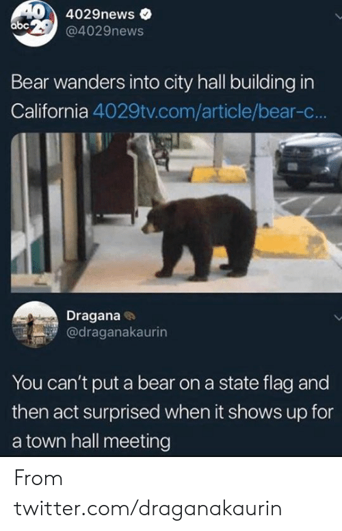 Abc, Dank, and Twitter: 404029news  abc 29@4029news  Bear wanders into city hall building in  California 4029tv.com/article/bear-c...  Dragana  @draganakaurin  You can't put a bear on a state flag and  then act surprised when it shows up for  a town hall meeting From twitter.com/draganakaurin