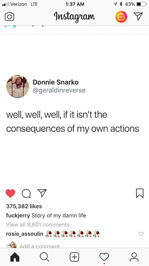 Fuckjerry: 43%  l VerizonLTE  1:37 AM  Instagram  Donnie Snarko  @geraldinreverse  well, well, well, if it isn't the  consequences of my own actions  375,382 likes  fuckjerry Story of my damn life  View all 8,601 comments  rosie_assoulin RR.  RRR  Add a comment  (+)