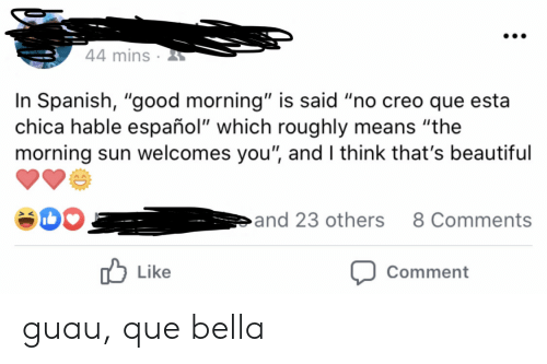 "Roughly: 44 mins  In Spanish, ""good morning"" is said ""no creo que esta  chica hable español"" which roughly means ""the  morning sun welcomes you"", and I think that's beautiful  and 23 others  8 Comments  Like  Comment guau, que bella"