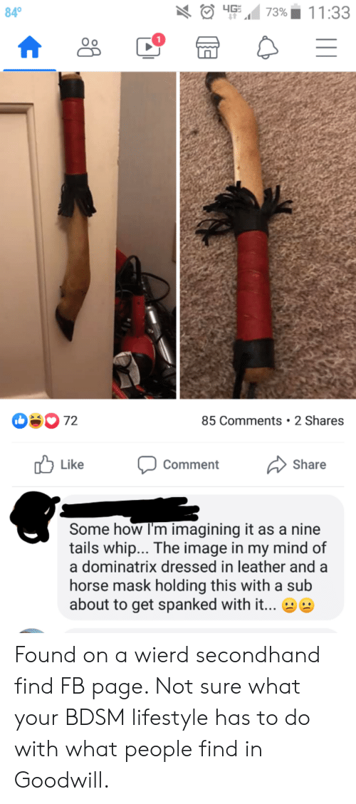 Whip, Horse, and Image: 4G  11:33  84  73%  0 72  85 Comments 2 Shares  Like  Comment  Share  Some how I'm imagining it as a nine  tails whip... The image in my mind of  a dominatrix dressed in leather and a  horse mask holding this with a sub  about to get spanked with it... Found on a wierd secondhand find FB page. Not sure what your BDSM lifestyle has to do with what people find in Goodwill.