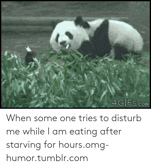 I Am Eating: 4GIFScom When some one tries to disturb me while I am eating after starving for hours.omg-humor.tumblr.com