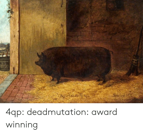 Tumblr, Blog, and Http: 4qp: deadmutation:    award winning